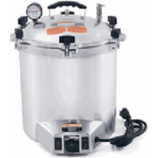 75X Electric Sterilizer